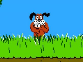 Pies z duck hunt
