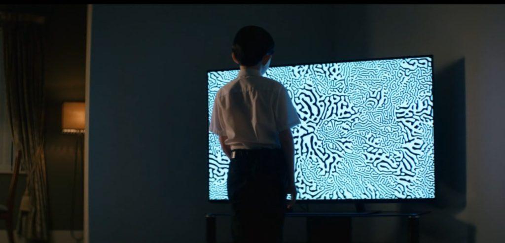 wiwarium telewizor